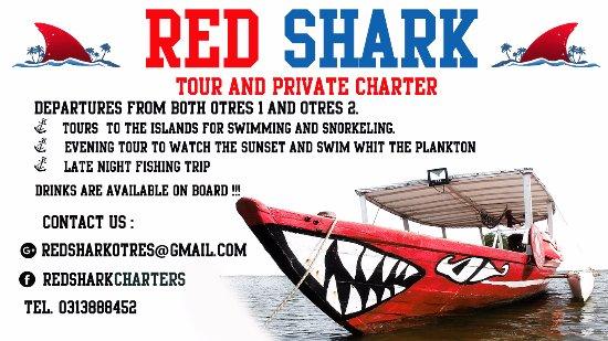 Red Shark Charter